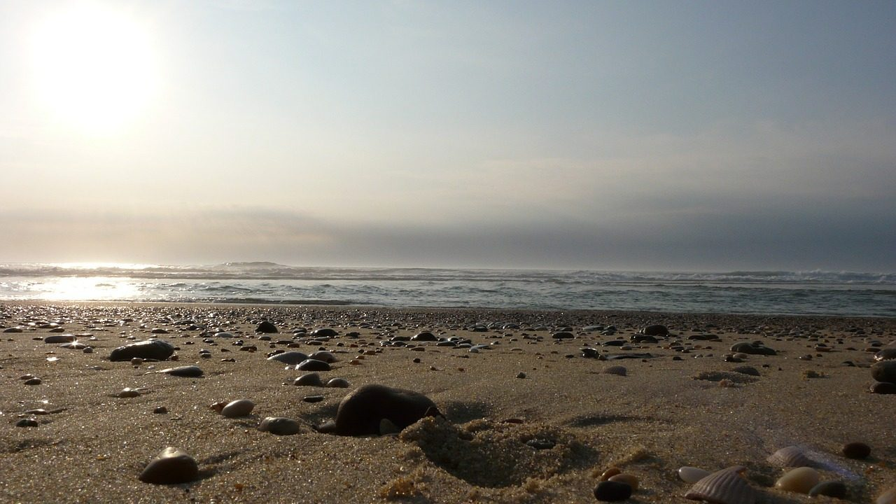 Les Landes et les paysages du littoral